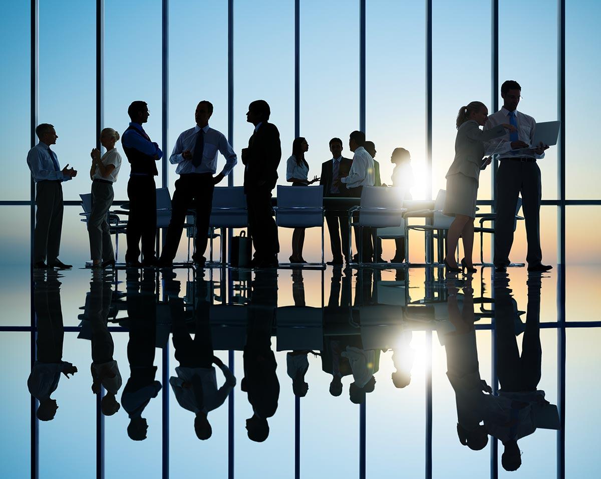 Creazione e gestione rete vendita